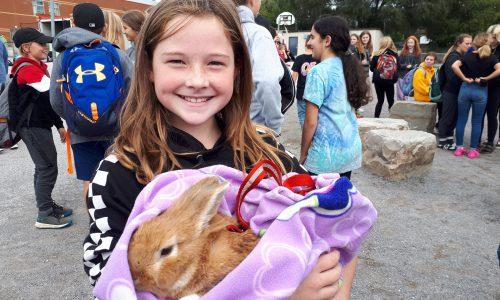 girl holding a bunny